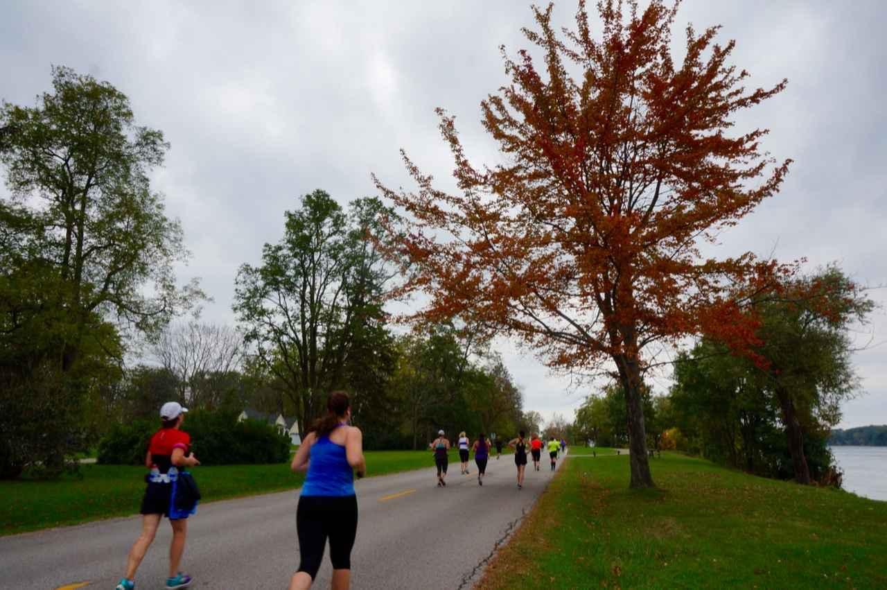 画像6: おすすめは国境越えのフルマラソン。レベルに合わせて選べる4種目