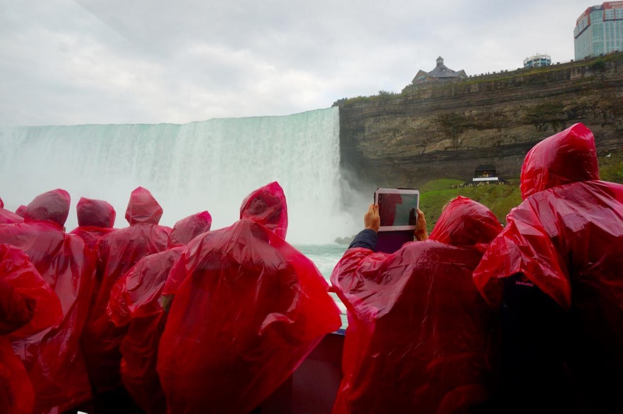 画像4: 今年はカナダ建国150周年記念の年
