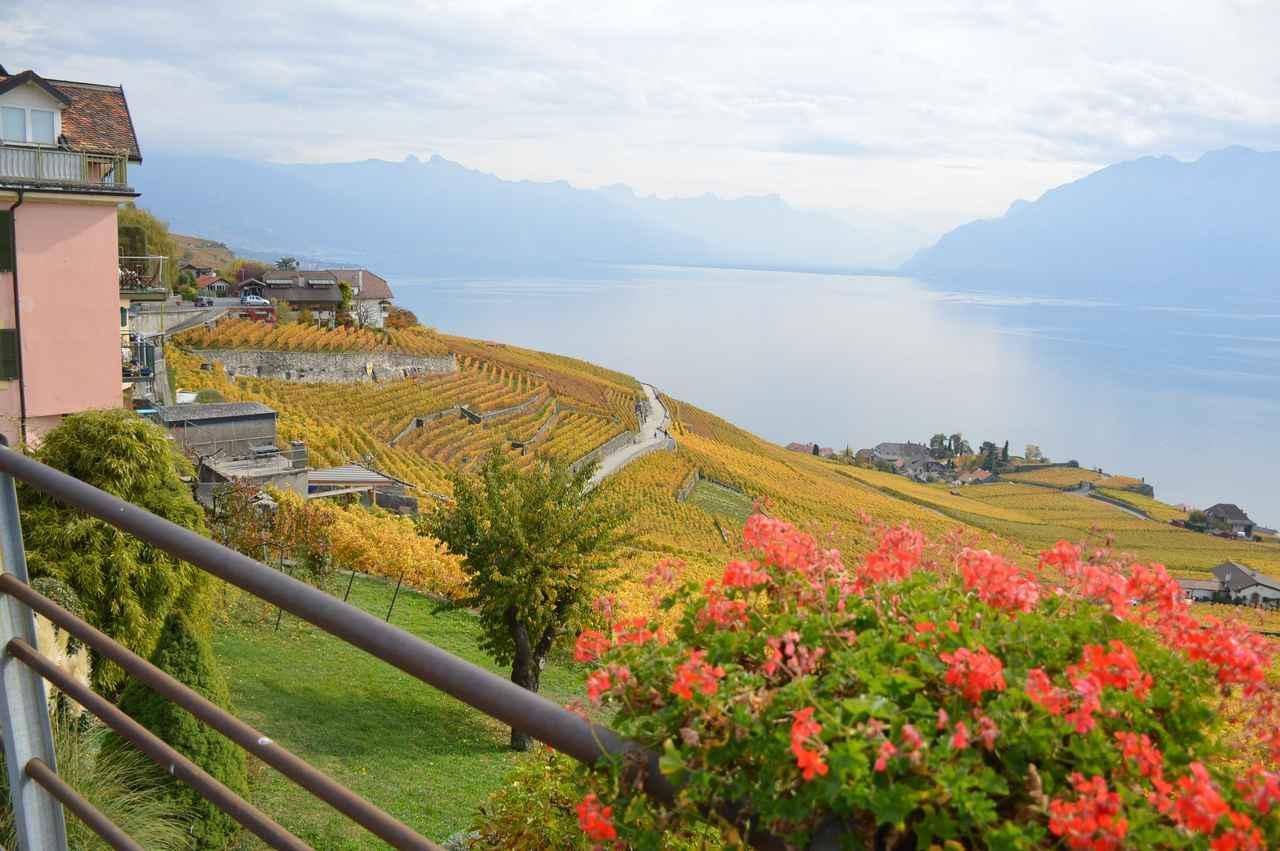画像2: ツアーは6日間コース8日間の2パターン。 どちらもスイスインターナショナルエアラインズの直行便でチューリッヒへ