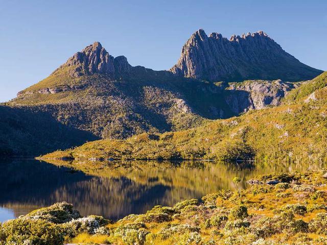 画像: 世界遺産クレイドルマウンテンの黄葉