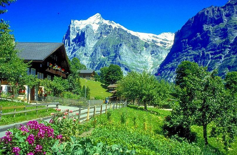 画像: 【26788】<ハイク初級~中級>『(ヨーロッパ乗継)ツェルマットとグリンデルワルトに1週間ずつ滞在 スイスロングステイハイキング 21日間』 貸別荘でロングステイ!|クラブツーリズム