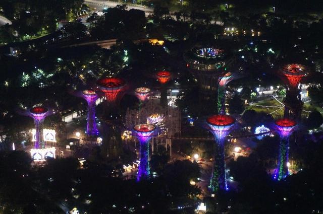 画像16: 【地球を走ろう】ガーデンシティをめぐる人気大会! シンガポールマラソンツアー 大会レポート