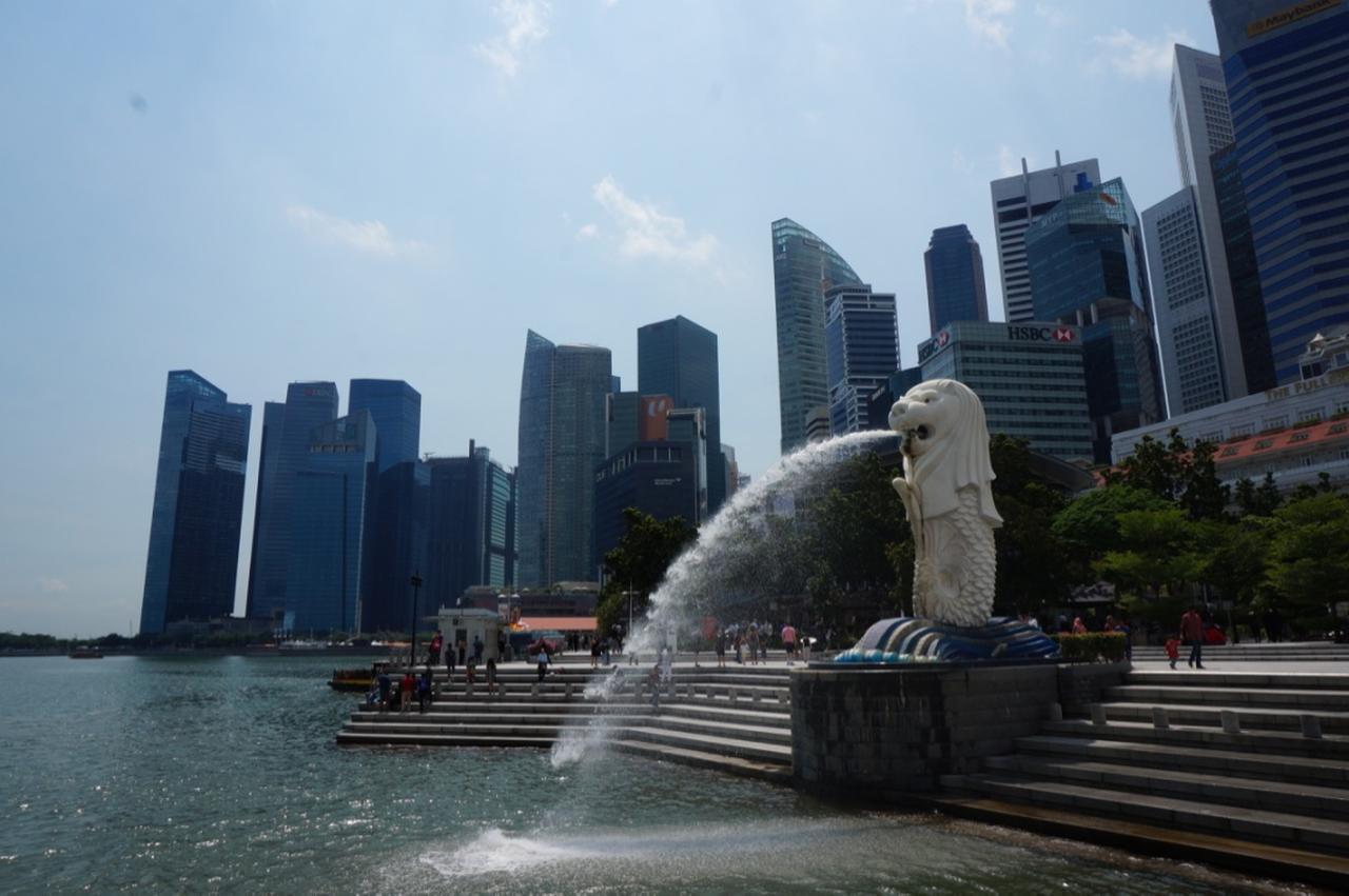 画像4: 【地球を走ろう】ガーデンシティをめぐる人気大会! シンガポールマラソンツアー 大会レポート
