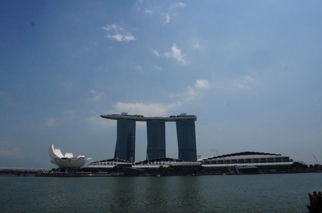 画像5: 【地球を走ろう】ガーデンシティをめぐる人気大会! シンガポールマラソンツアー 大会レポート