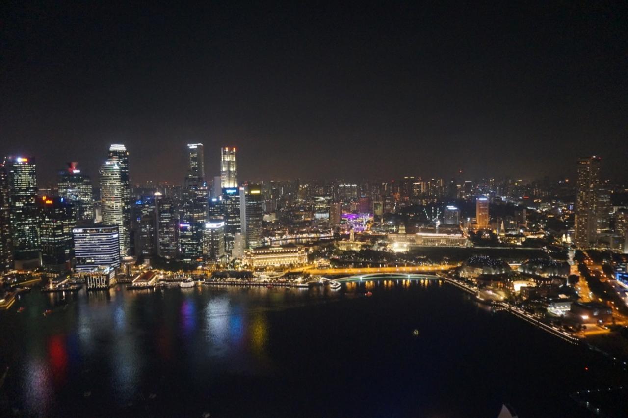 画像15: 【地球を走ろう】ガーデンシティをめぐる人気大会! シンガポールマラソンツアー 大会レポート