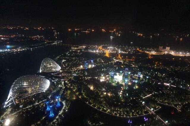 画像14: 【地球を走ろう】ガーデンシティをめぐる人気大会! シンガポールマラソンツアー 大会レポート