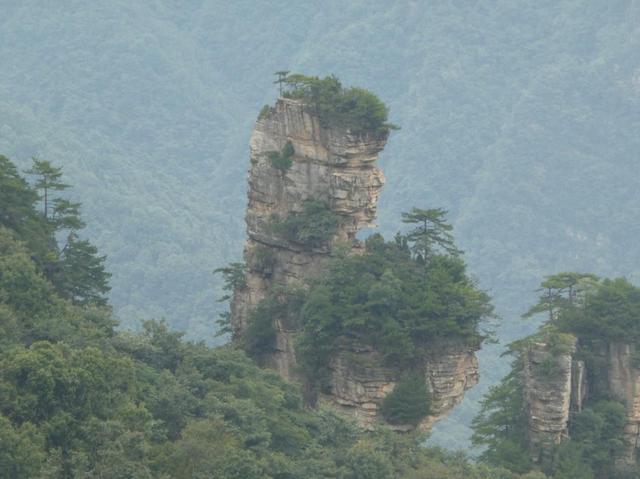 画像: 天子山からみることができる景色