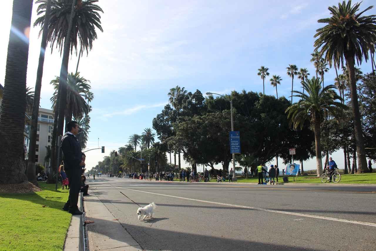 画像18: 【地球を走ろう】スタートはドジャースタジアム。LAを駆け巡る観光コース ロサンゼルスマラソン大会レポート