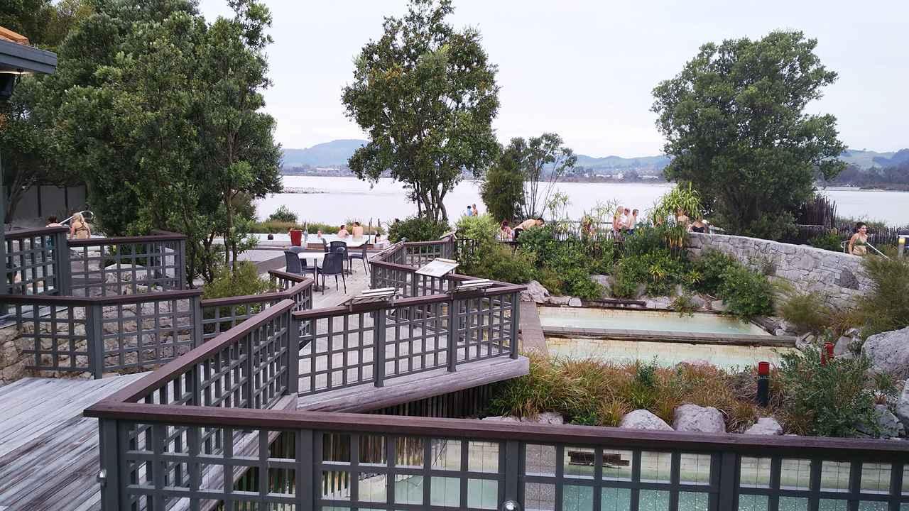 画像16: 【地球を走ろう】温泉とマオリの街 ニュージーランド ロトルアマラソンツアーレポート