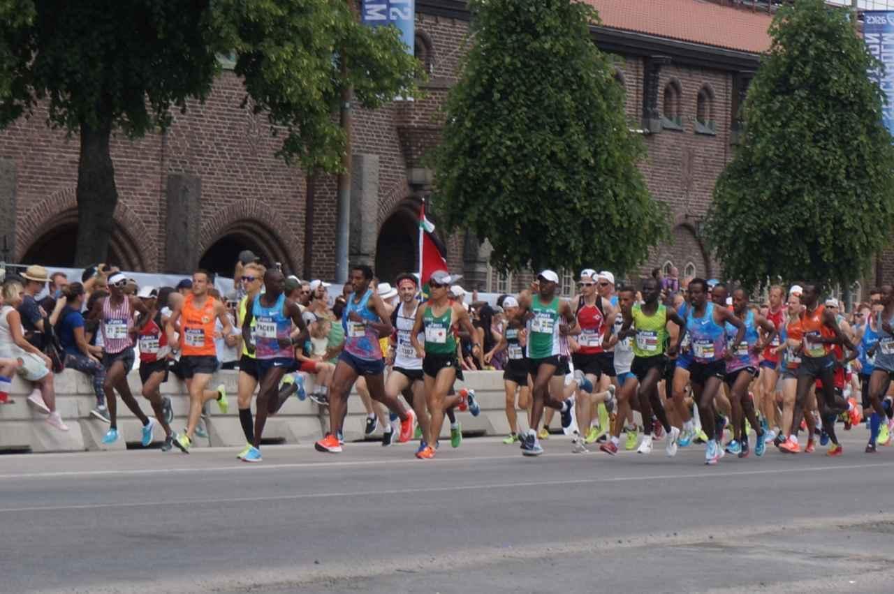 画像18: 【地球を走ろう!】新コース 美しい北欧の「水の都」 ストックホルムマラソンツアー 大会レポート