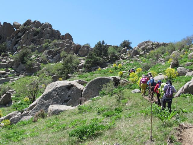 画像1: ハイキング中の風景