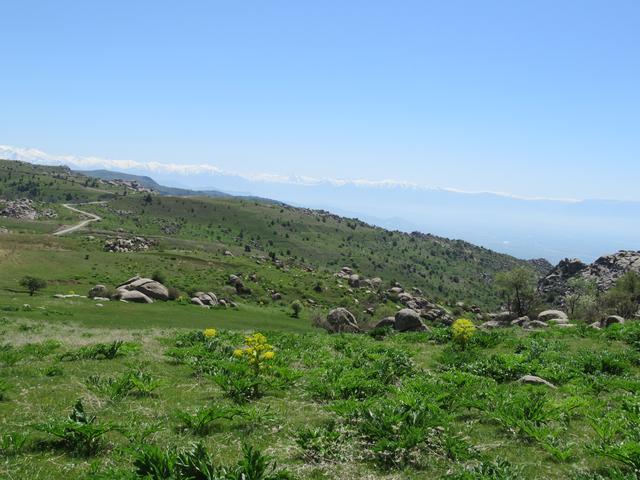 画像2: ハイキング中の風景