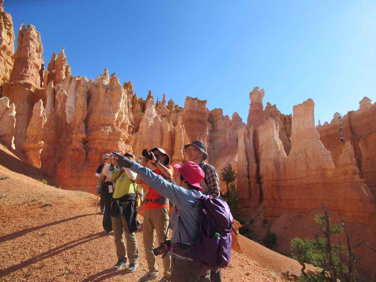 画像6: ハイキング中の風景