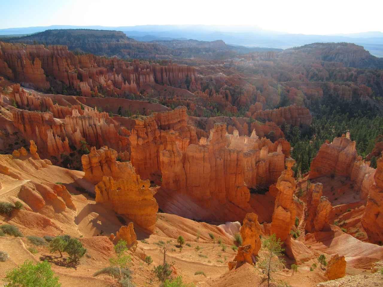画像5: ハイキング中の風景