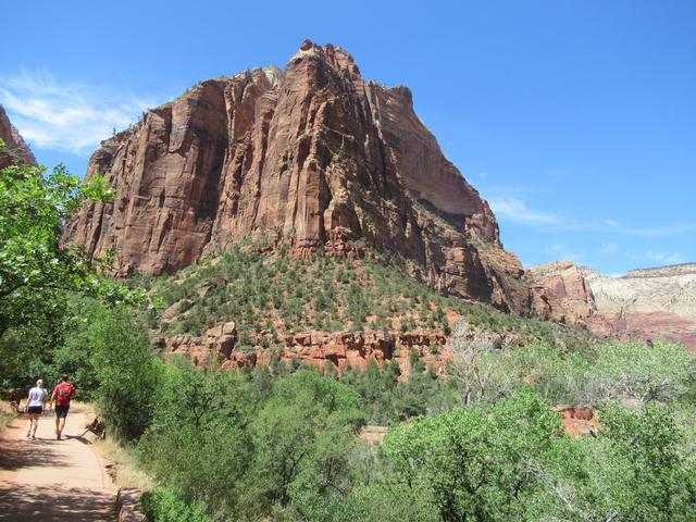 画像7: ハイキング中の風景