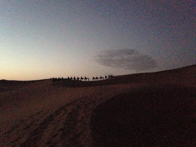 画像: サハラ砂漠