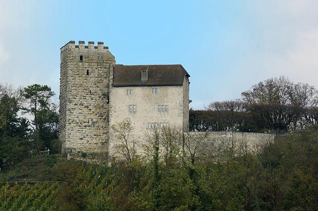 画像: 現存するハプスブルク城
