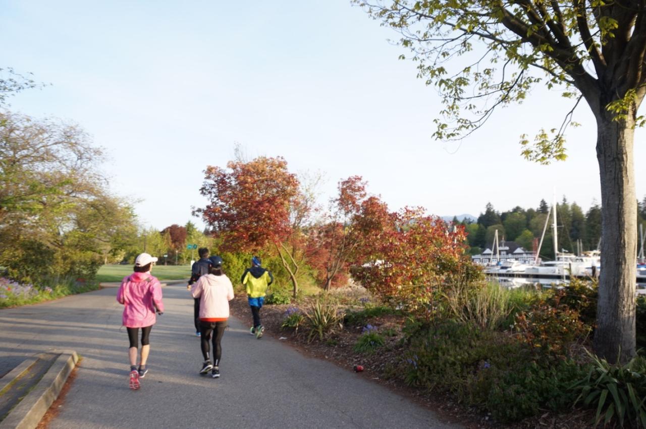 画像: 海沿いのジョギングコースは舗装もしっかりしており走りやすい印象です