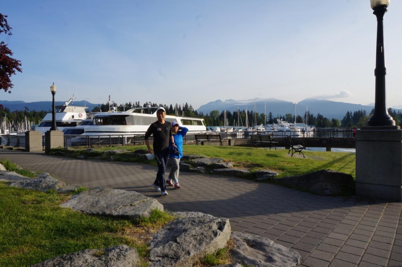 画像: 湾の反対側には山も見えます