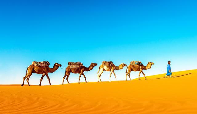 画像: 広大なサハラ砂漠 (イメージ)