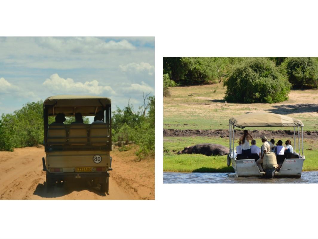 画像: 2種類のサファリを楽しめるチョベ国立公園(スタッフ撮影)