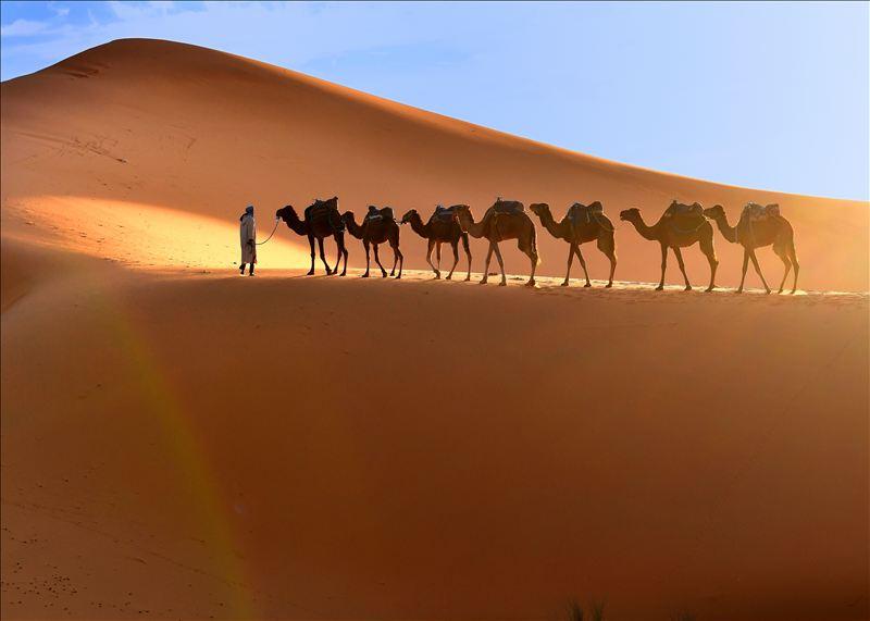 画像: サハラ砂漠(お客様撮影:埼玉県在住 髙柳喜代次様の作品)