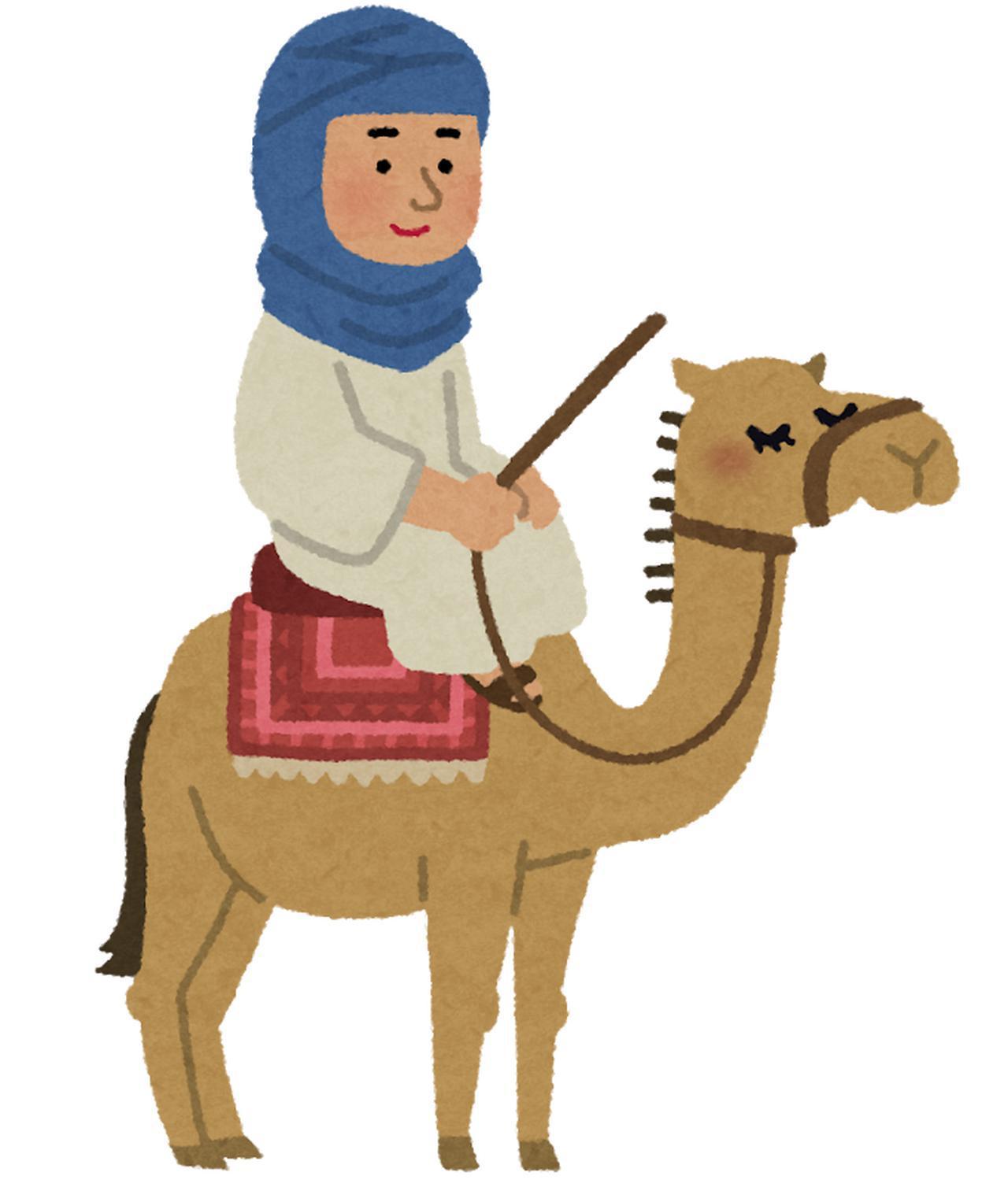画像5: 花カレンダー2021<2月2回目>『アーモンドの花ーモロッコの花風景』【好奇心で旅する海外】<花咲くワールド>