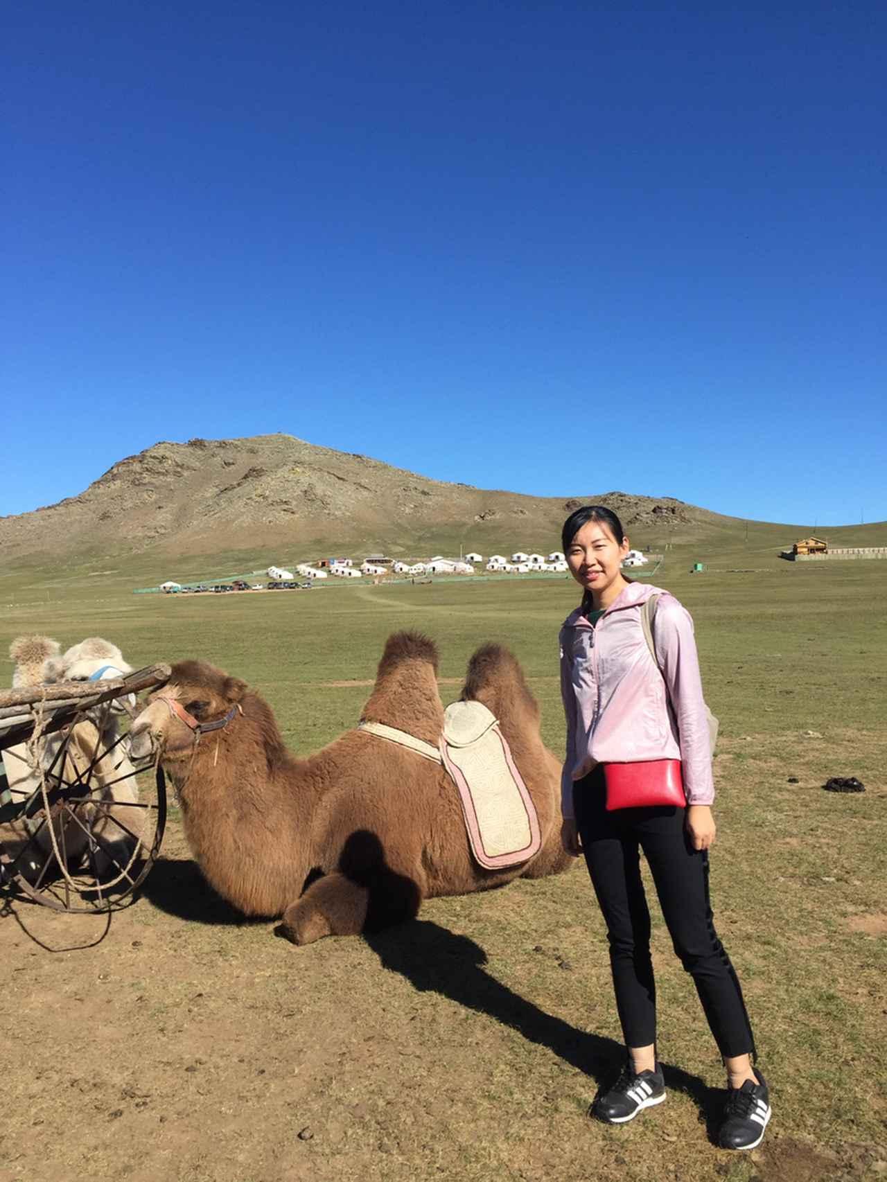 画像1: 【モンゴル】遊牧民の家庭訪問♪モンゴルの大草原から生中継!オンラインツアーを実施しました!