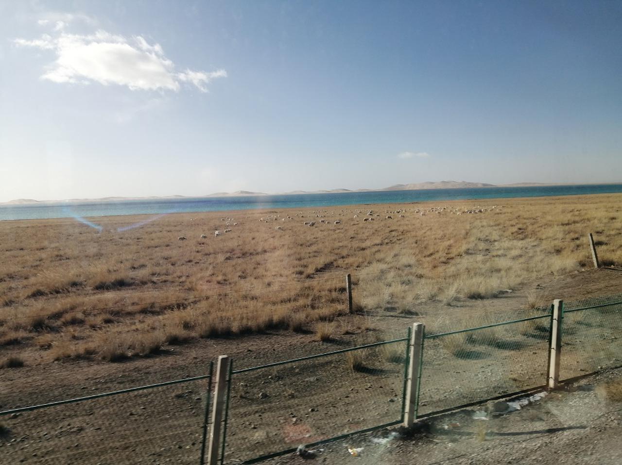 画像: 出発して間もなく見えてくる中国最大の塩湖・青海湖