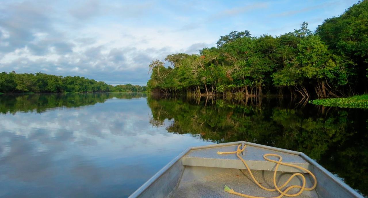 画像: アマゾン河クルーズ