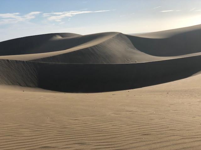 画像: マス・パロマス(グランカナリア島)(弊社スタッフ撮影) 海岸に沿って全長約8km 幅約2kmの砂丘が広がっています。