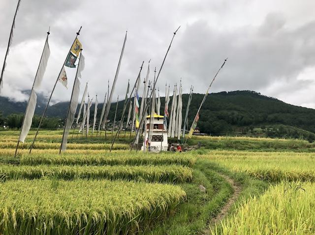 画像: ドチュラ・パース  経文が書かれたダルシン(立てる旗)がたなびく様子(2018年9月・弊社添乗員撮影)