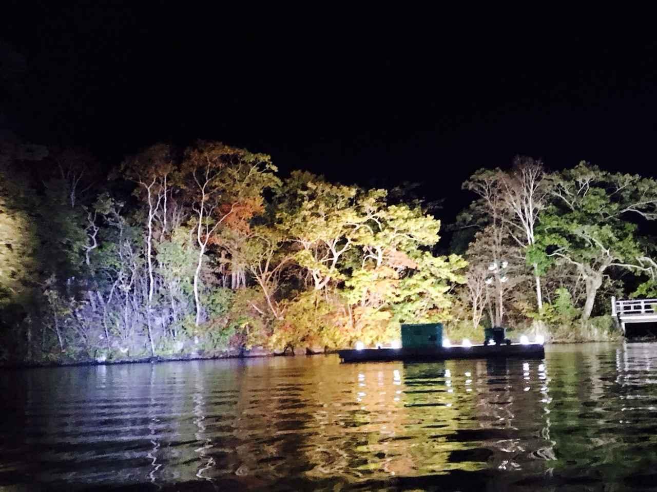画像: クラブツーリズム特別企画!第7回『大沼紅葉ライトアップクルーズとハロウィンナイト』