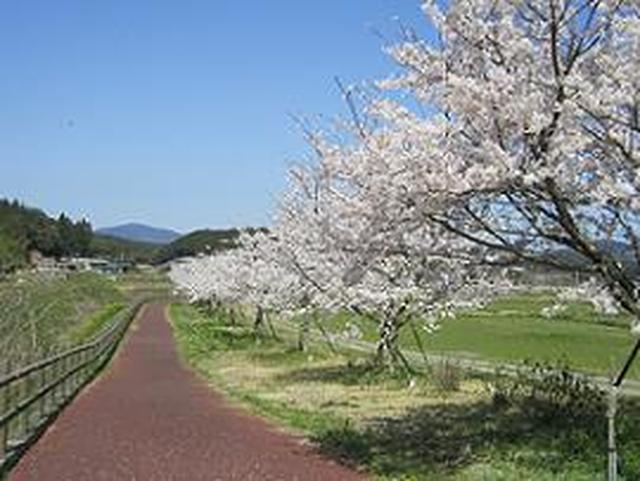 画像: <ウォーキング>『ONSENガストロノミーウォーキング in長崎県・波佐見温泉 3日間』 【フェリーさんふらわあ利用】|クラブツーリズム