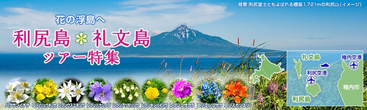 画像: 利尻島・礼文島旅行・ツアー クラブツーリズム