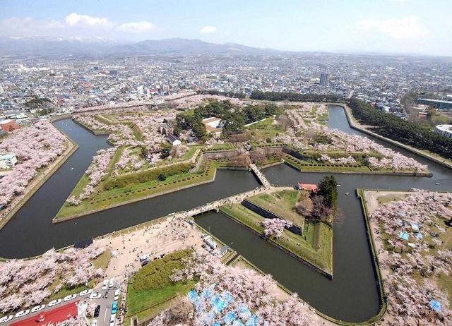 画像: 星型の城郭で有名な五稜郭の桜は一度は見たい絶景です。