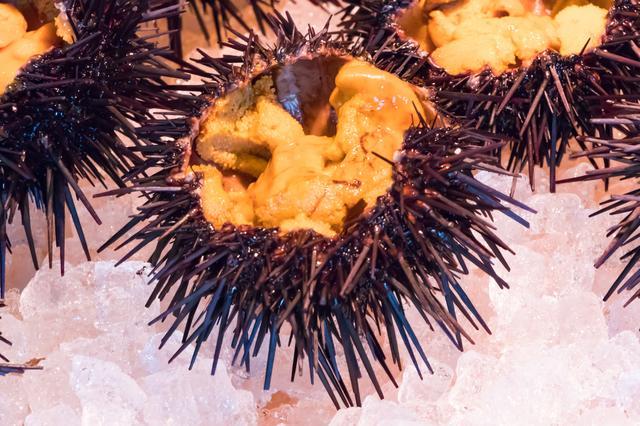 画像: 新鮮なウニを食べられるのは現地に行った人だけの特権かも!?