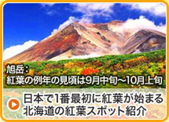 画像: 北海道行き 旅行・ツアー|クラブツーリズム