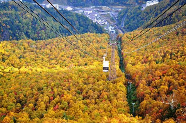 画像: 秋 の黒岳は大パノラマ!車窓に広がる一面の紅葉をお楽しみください!