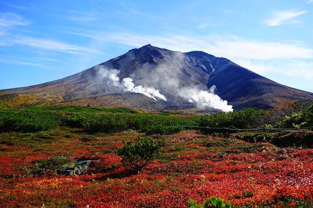 画像: 最高峰は旭岳!北海道では珍しく、真っ赤な紅葉を楽しめます♪