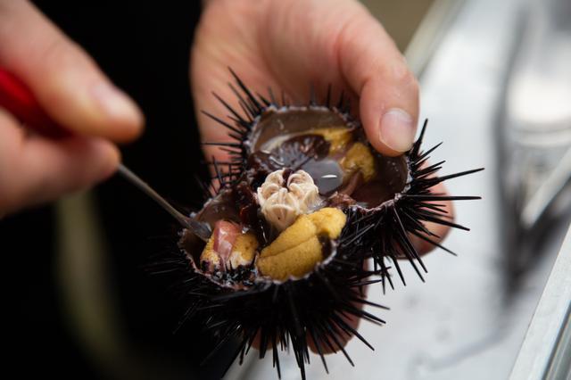 画像: 礼文島には実際にウニむきを体験できる施設もございます。