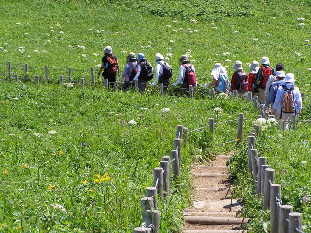 画像: 天然の花畑を爽やかハイキング♪