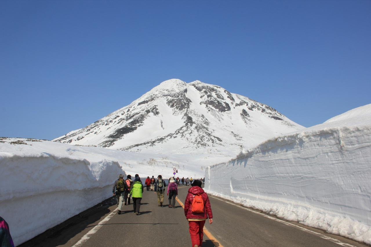 画像: 【北海道】1年に1回だけの限定イベント!「知床横断道路」開通直前ウォークの『羅臼コース』に2019年の様子を企画担当者が紹介します! - クラブログ ~スタッフブログ~|クラブツーリズム