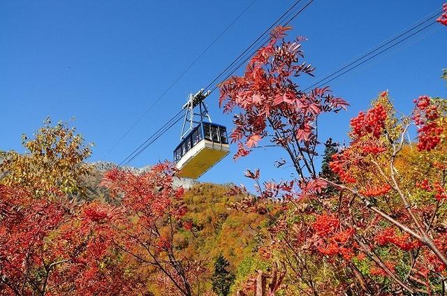 画像: 立山黒部アルペンルートへ行くお勧めツアー