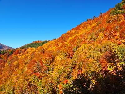 画像: 秋山郷へ行くお勧めツアーはこちら