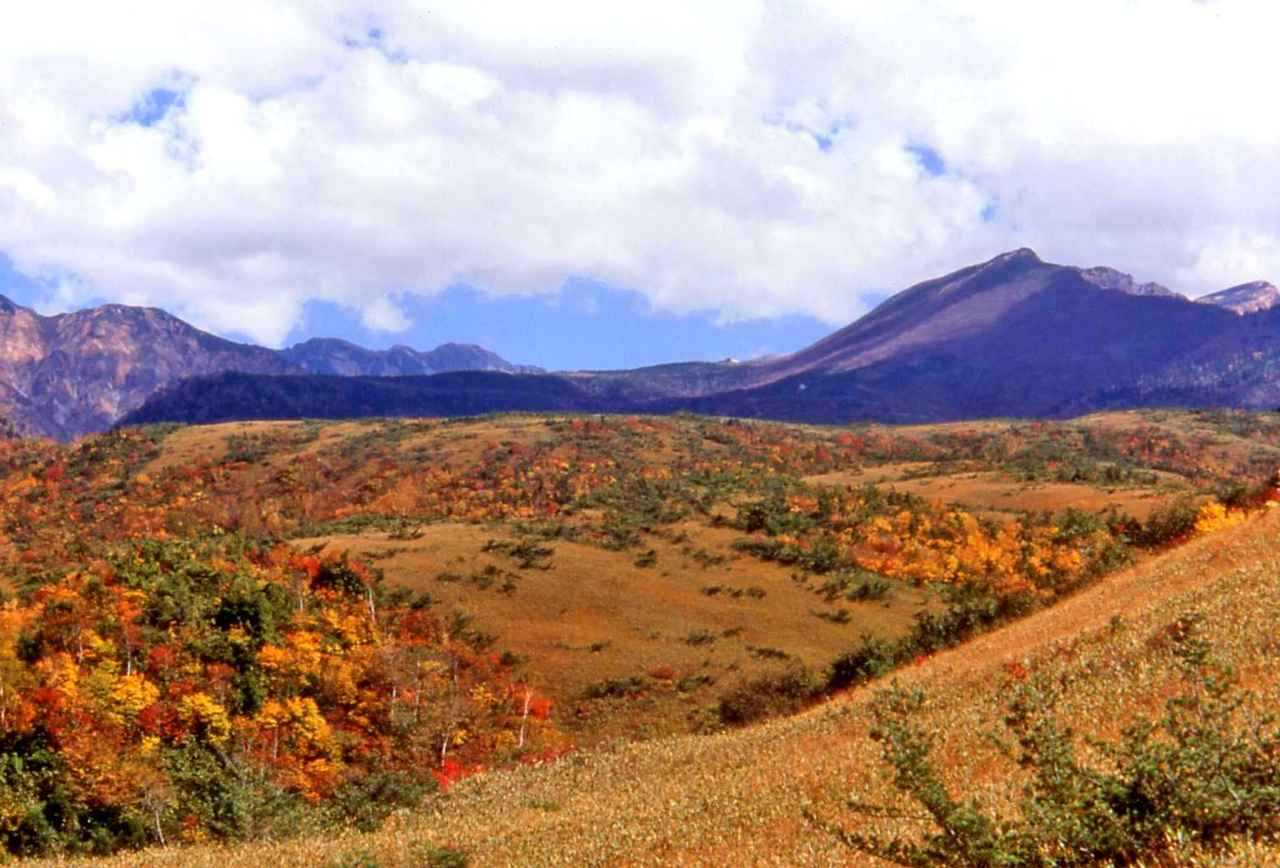 画像: 立山黒部アルペンルートの紅葉(イメージ※写真をクリックすると、立山黒部アルペンルート特集ページへ遷移します。) www.club-t.com
