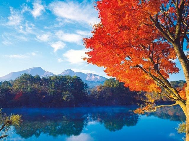 画像: 五色沼でも、もっとも大きな毘沙門沼