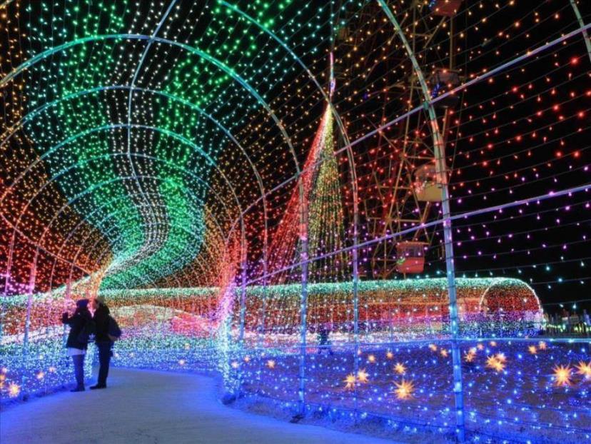 画像: 東京ドイツ村(イメージ) www.club-t.com