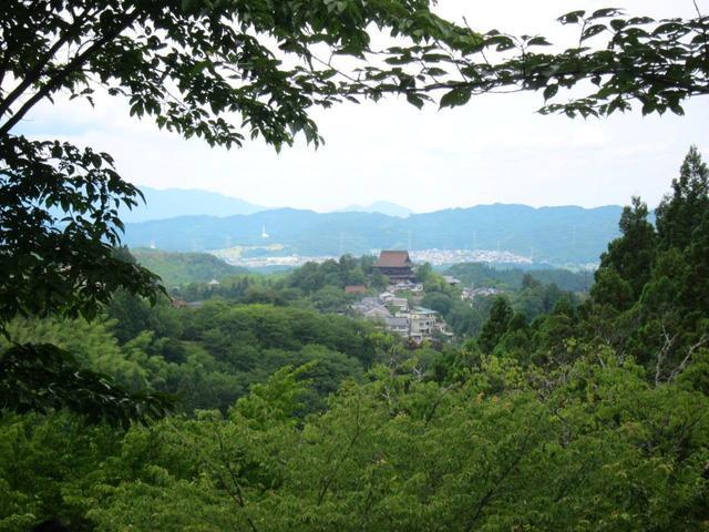 画像: 新緑の吉野山の凛とした空気はヨガにもぴったりです