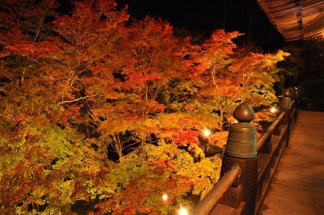 画像: 隠れた紅葉の名所・播州清水寺(イメージ)